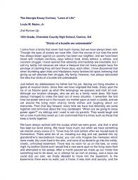 do my literature essays professional application letter goals in life essay goal essay