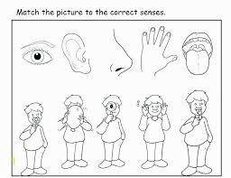 5 Senses Coloring Pages Five Senses Coloring Pages Beautiful Five
