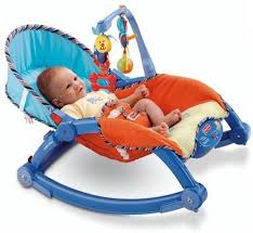 The Flyer's Bay Fiddle Diddle Newborn to Toddler Portable Baby Chair ...