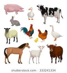 domestic animals clipart. Delighful Domestic Farm Animals Set And Domestic Animals Clipart L
