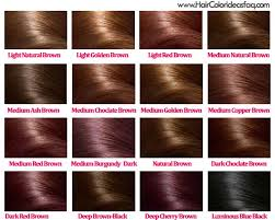 Copper Brown Hair Color Chart I Like The Medium Golden Brown And Medium Copper Brown
