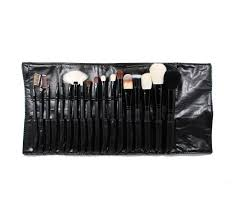 set 684 18 piece professional brush set