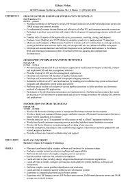 Information Technician Resume Samples Velvet Jobs