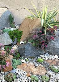 my seascape rock garden includes stonecrops hens and other dryland succulents with c reef looks