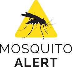 Mosquito Chart Mosquito Alert Map Api