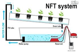 homemade hydroponic growing systems nutrient technique for hydroponic diy vertical hydroponic grow system