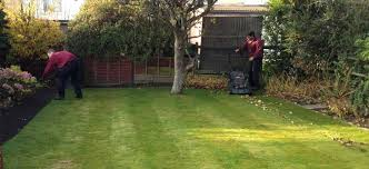 Small Picture Smart Gardens Gardening Landscaping Leeds Smart Gardens