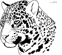 Small Picture Jaguar Coloring Pages Best Coloring Pages adresebitkiselcom