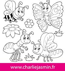 Coloriage Insecte A Colorier Dessin A Imprimer L L L L Coloriage Deja Colorier L