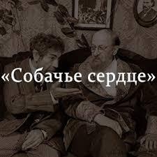Собачье сердце краткое содержание по главам повести Булгакова  Краткое содержание Собачье сердце