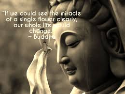Quotes About Life Buddha