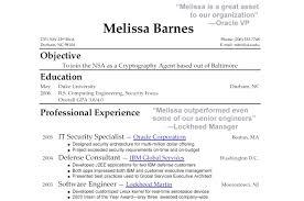 Resume Profile Fascinating Profile Resume Samples Executive Samples Resume Profile Examples For