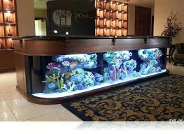 office desk aquarium. Contemporary Aquarium Office Desk Aquarium Fish Tank Throughout Ideas 1 Intended
