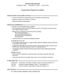 Titles For Resume Good Resume Titles 8 Examples Job Career Builder Sample Profile