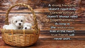 Quotes About Friendship And Distance Beauteous Long Distance Friendship Messages And Quotes For Friends WishesMsg