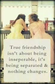 Quotes About Friendship And Distance Inspiration 48 Best Quotes About Friendship With Images