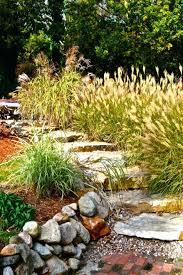 office landscaping ideas. Office Landscaping Ideas Amys Landscape Low Maintenance Rock For Front Yard Building