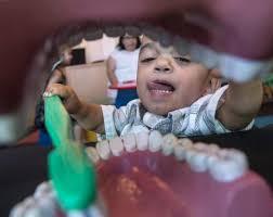 garden grove dental. Nathaniel Zepeda, 3, Of Whittier, Brushes Fake Teeth In The Tooth Fairy Center Garden Grove Dental