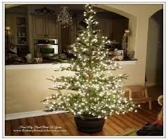 Full Size of Christmas: Real Christmas Trees For Sale And Q Best Images  Collections Hdding ...