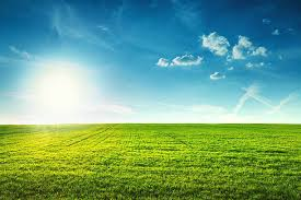 Royalty Free Field Pictures Images and Stock Photos iStock