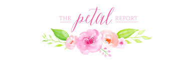 The Petal Report Charleston Sc Wedding Consulting Firm Full