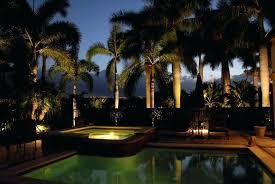 tree lighting ideas. Palm Tree Outdoor Light Decoration Ideas Lighting Outdoors Outside Backyard Post