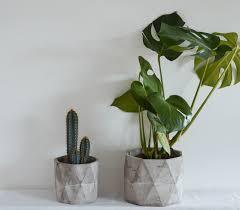 decorative concrete planters garden lilyweds more images of
