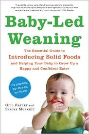 Baby Led Weaning The Essential Guide To Introducing Solid
