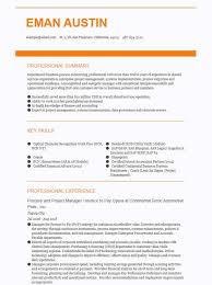 Exceptional Resume Examples 2019 Accounting Finance Resume Examples 100 Resume Examples