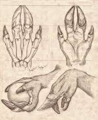 hand anatomy anatomy study anatomy reference drawing reference alien concept art