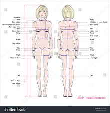 Prototypical Body Measurement Chart Sewing Human