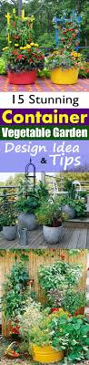 create a container vegetable garden that gives you a bountiful harvest of fresh homegrown vegetables and
