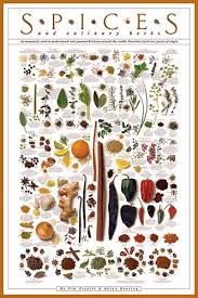 Herb And Spice Wall Chart Spices And Culinary Herbs Wall Chart Poster By Tim Ziegler