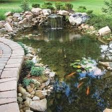 Small Picture Minimalist Garden Design With Koi Fish Pond Adorned Natural Stone