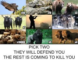 pick two to defend you the rest are coming to kill you