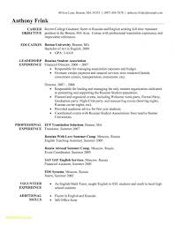 Sample French Resume Resume For Study