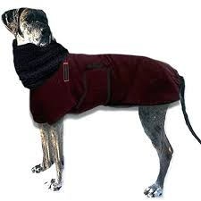 what is the warmest winter coat polar winter dog coats for great thermal dog winter coat what is the warmest winter coat