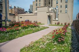 green roof laws