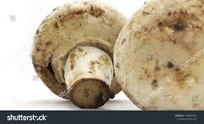 crimini mushroom on white background