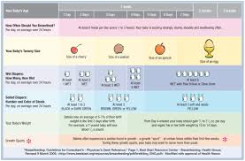 Diaper Amount Chart Pin On Breastfeeding And Solid Foods