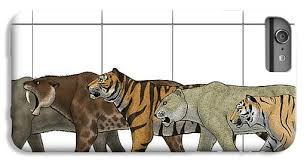 Phone Case Size Chart Big Felines Size Chart Iphone 6 Plus Case