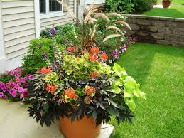 1663 Best Container Gardening Ideas Images On Pinterest Container Garden Ideas For Front Porch