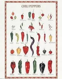 Pepper Chart 2017 Food Variety Posters Google Search 2017 Stuffed
