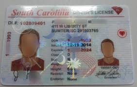 License A Spot Artistcrise To Carolina Drivers - Fake How South