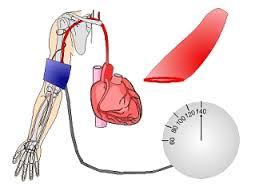 Cara Menyembuhkan penyakit Hipertensi | Darah Tinggi Dengan Obat Herbal Alami Sampai Tuntas