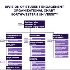 Student Life Org Chart Office Of Student Engagement Student Affairs Northwestern