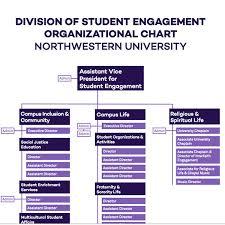 Northwestern Chart Office Of Student Engagement Student Affairs Northwestern