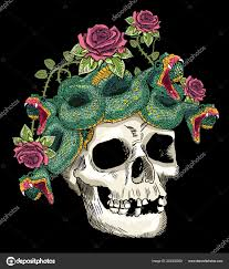 японский стиль череп змея розы векторное изображение Vecture