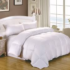 Can Down Comforters Cause an Allergic Reaction? | Best Goose Down ... & EXCLUSIVE - Get a Discount and See The #1 Rated All-Season Goose Down  Comforter! Adamdwight.com