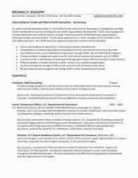 Non Profit Ceo Resume Examples Cover Letter For Non Profit Ceo